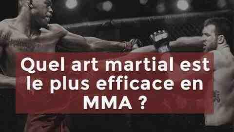 Quel est l'art martial le plus complet?