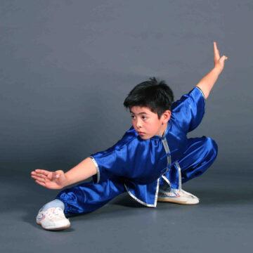 Quel est l'art martial le plus efficace ?