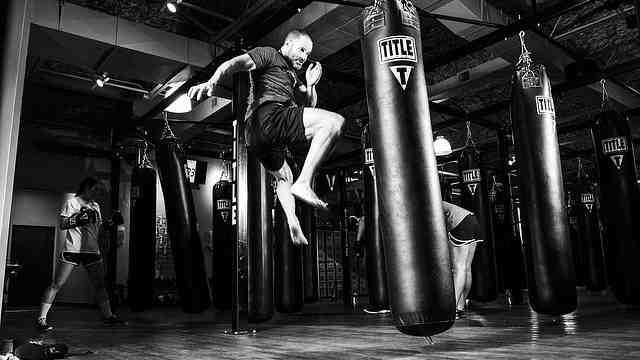 Quel est le meilleur sport à combattre?