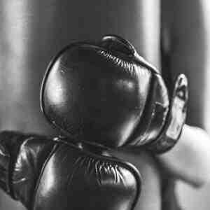 Quel est le sport de combat le plus efficace?