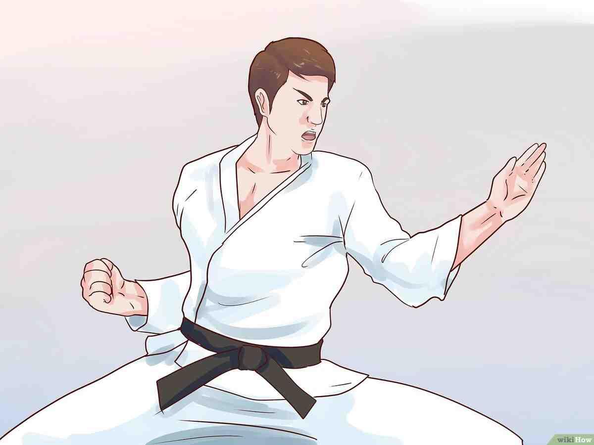 Quel est le sport de combat le plus puissant?