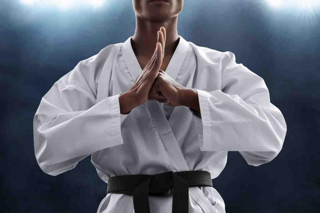 Quel est le meilleur art martial pour se défendre?