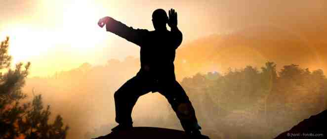 Quels sont les meilleurs arts martiaux au monde?