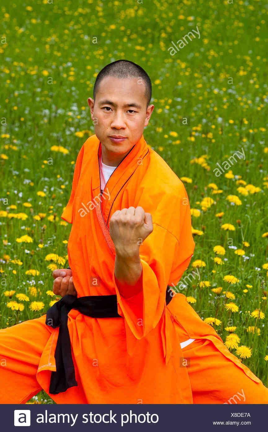 Qui a créé le kung-fu?