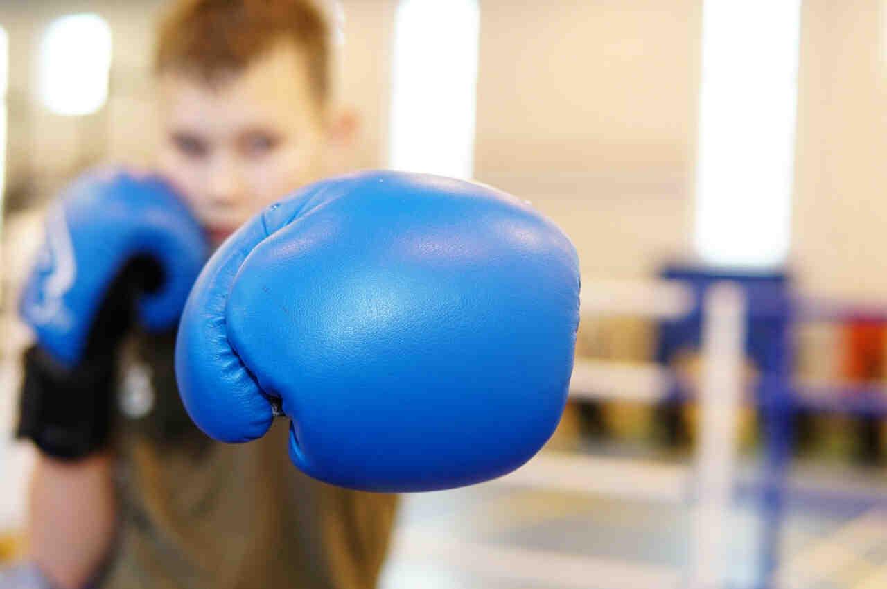 Quels sont les muscles des sports de combat les plus populaires?