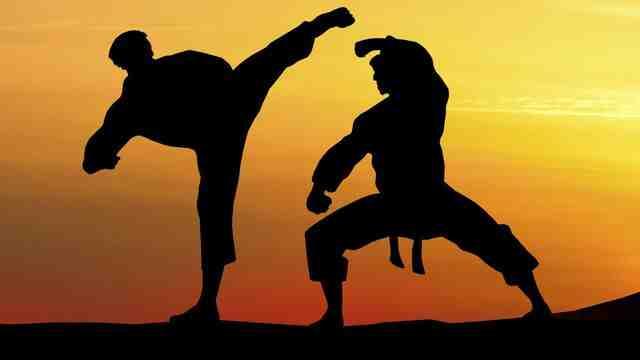 Quels sports de combat sont olympiques?