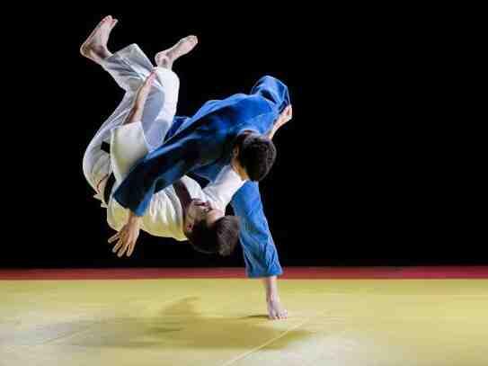 Que sont les arts martiaux olympiques ?
