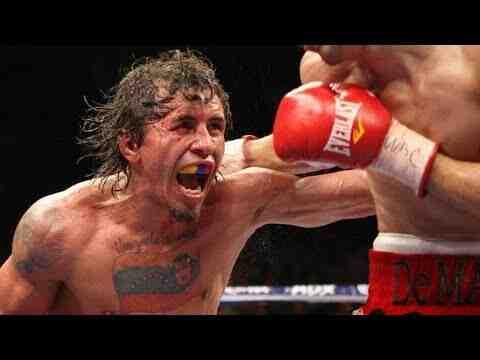 Quel boxe est la plus dangereuse ?