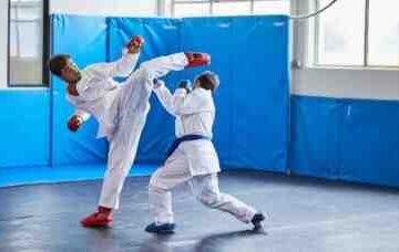 Quels sont les différents arts martiaux ?